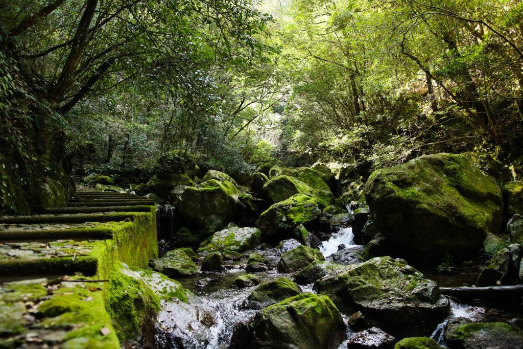 越知町・大樽の滝