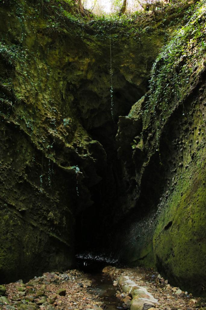 伊尾木洞|安芸市