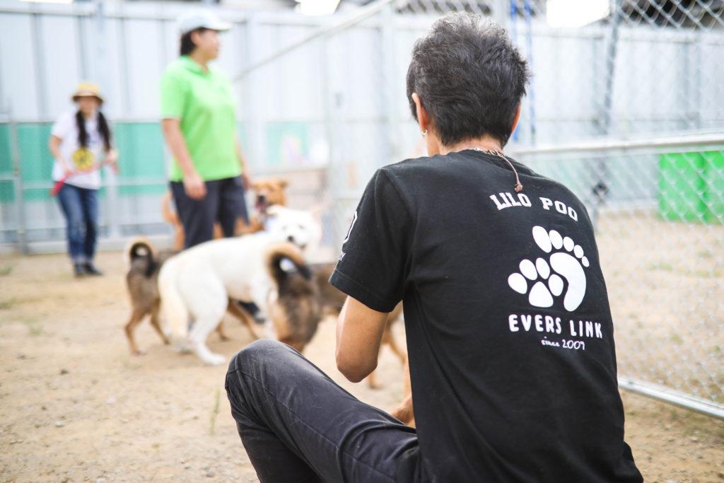 エバースリンク(EVERS LINK) / 吉村義文