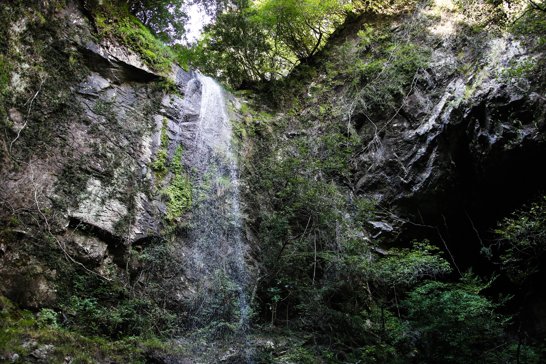 樽の滝(須崎市)