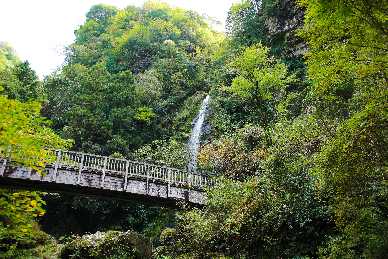 大樽の滝(越知町)|日本の滝百選にも選ばれた高知屈指の名瀑