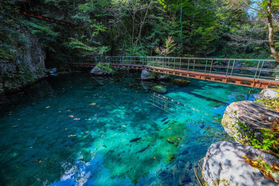 白龍湖(Hakuryuko)|高知にモネの池?地図にない四国カルスト麓の秘境スポット。