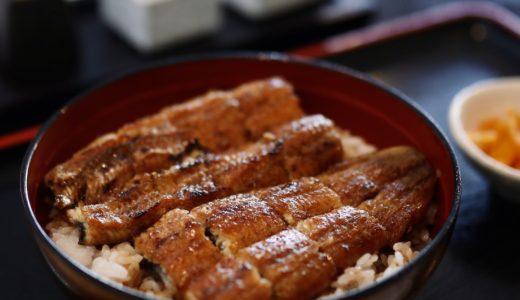 うなぎ屋 源内(げんない)|フワッ香ばしい炭火焼うなぎ!高知市北御座にある土佐炭火焼うなぎの名店。