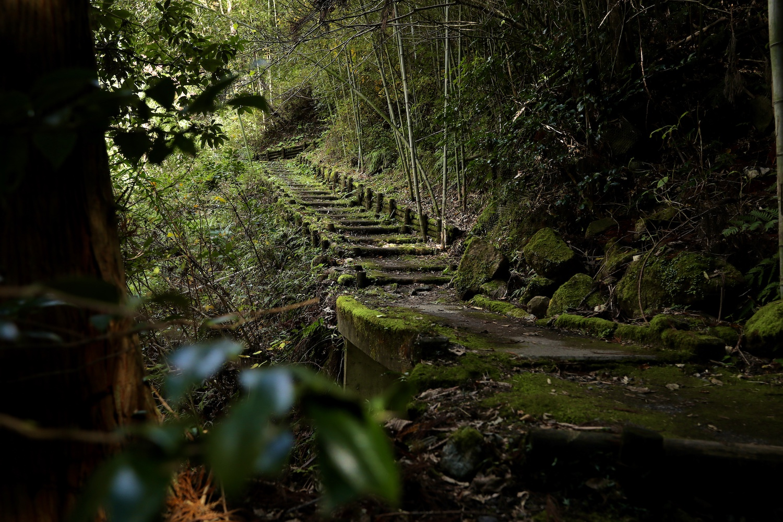 轟の滝(とどろきのたき)|香美市のシンボル!?「日本の滝100選」にも選ばれた三段の名爆