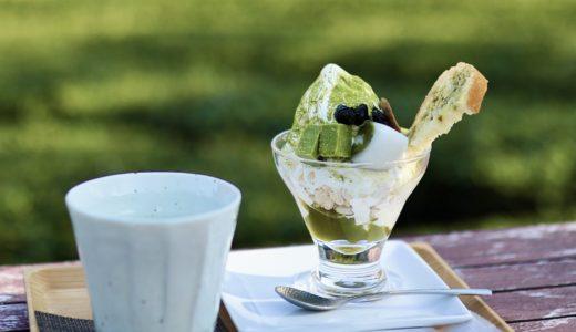 池川茶園工房Cafe(仁淀川町)|茶畑を眺めながらの味わう贅沢スイーツ