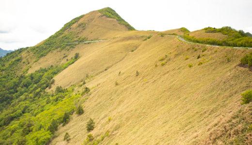 UFOライン(瓶ヶ森林道)|雄大な峰を眺望!天空へと続く絶景ドライブコース